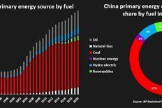 چین ادعا می کند در برنامه های خود برای تأمین انرژی، از اهداف زیست محیطی نیز غافل نخواهد شد